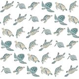 Seamless pattern with watercolor sea turtle on white background.Summer exotic print royalty free illustration