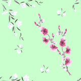 Seamless pattern watercolor small white and pink flowers on the green background Stock Photos