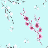 Seamless pattern watercolor small white and pink flowers on the light blue background Royalty Free Stock Photos