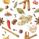 Seamless pattern with watercolor spices. Cinnamon, ginger, onion, garlic, chili pepper, anise star, nutmeg, cardamom and cloves Stock Image