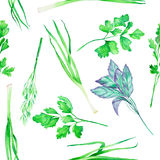 A seamless pattern with the watercolor spices: onion green, dill, parsley, cilantro and basil Royalty Free Stock Photos