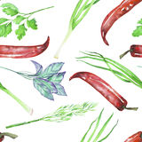 A seamless pattern with the  watercolor spices (spicy herbs). Onion green, dill, parsley, cilantro, red chili peppers and basil, painted on a white background Stock Photos