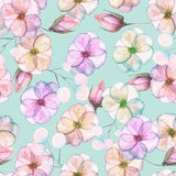 Seamless pattern with watercolor tender flowers in pink and purple pastel shades. Hand drawn on a blue background Royalty Free Stock Image