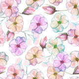 Seamless pattern with watercolor tender flowers in pink and purple pastel shades. Hand drawn on a white background stock illustration