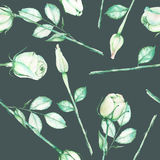 A seamless pattern with the watercolor tender green roses on a dark green background Royalty Free Stock Image
