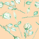 A seamless pattern with the watercolor tender green roses on a pink creamy background Stock Photos