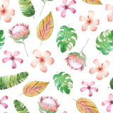 Seamless pattern with watercolor tropical flowers. Leaves and plants. Hand painted jungle paradise background perfect for textile and scrapbooking Royalty Free Stock Images