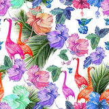 Seamless pattern watercolor tropical flowers, palm tree and birds. Tropical pattern with flamingos and exotic bright colors Royalty Free Stock Photo