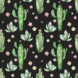 A seamless pattern with the watercolor various kinds of cactuses and flowers Stock Photography