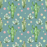 A seamless pattern with the watercolor various kinds of cactuses and flowers Royalty Free Stock Image