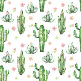 A seamless pattern with the watercolor various kinds of cactuses and flowers Stock Photo