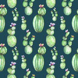 A seamless pattern with the watercolor various kinds of cactuses Stock Photos