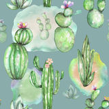 A seamless pattern with the watercolor various kinds of cactuses Royalty Free Stock Photos