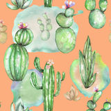 A seamless pattern with the watercolor various kinds of cactuses Royalty Free Stock Photography