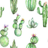 A seamless pattern with the watercolor various kinds of cactuses Royalty Free Stock Image