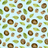 Seamless pattern with  watercolor walnuts elements. Hand painted isolated on a blue background Royalty Free Stock Photography