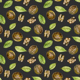 Seamless pattern with  watercolor walnuts elements. Hand painted isolated on a dark background Royalty Free Stock Images