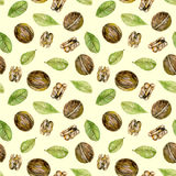 Seamless pattern with  watercolor walnuts elements. Hand painted isolated on a light yellow background Royalty Free Stock Images