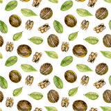 Seamless pattern with  watercolor walnuts elements. Hand painted  on a white background Royalty Free Stock Images