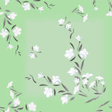 Seamless pattern watercolor white flowers on a green background Royalty Free Stock Photo