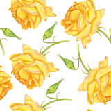 Seamless pattern with watercolor yellow roses Royalty Free Stock Photography