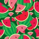 Seamless pattern of watermelon Stock Photography