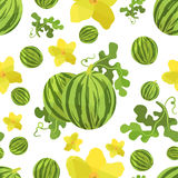 Seamless pattern watermelon  and flower in origami style. On white field Royalty Free Stock Photos