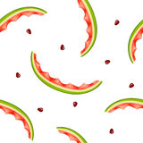 Seamless pattern of watermelon rinds and seeds on white backgrou Stock Images