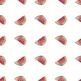 Seamless pattern watermelon watercolor stock illustration