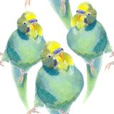 Seamless pattern wavy parrot blue with a yellow head. watercolo Stock Photos