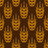 Seamless pattern with wheat. Agricultural image natural ears of barley or rye. Royalty Free Stock Photo