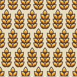 Seamless pattern with wheat. Agricultural image natural ears of barley or rye. Easy to use for backdrop, textile, wrapping paper, wallpaper Royalty Free Stock Image