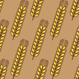 Seamless pattern of wheat ears Stock Photos