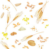 Seamless pattern with wheat foodstuff. There are wheat ears, grains, grits, oil, bread, flakes, cookies and flour Royalty Free Stock Images