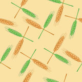 Seamless pattern with wheat. Organic Stock Photography