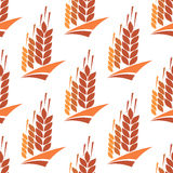 Seamless pattern of wheat, rye and barley Stock Photography