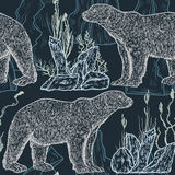Seamless pattern with white bear, north plants and icebergs. Royalty Free Stock Image