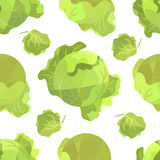 Seamless pattern white cabbage in origami style. On white field Stock Photography