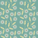 Seamless pattern with white camomile flowers on green background Stock Image