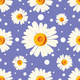 Seamless pattern with white chamomiles and dots on blue background. Stock Images