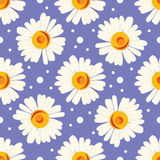 Seamless pattern with white chamomiles and dots on blue background. Stock Image