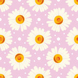 Seamless pattern with white chamomiles and dots on pink background. Royalty Free Stock Photo