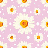 Seamless pattern with white chamomiles and dots on pink background. Royalty Free Stock Images