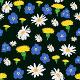 Seamless pattern with white daisies, cornflowers and dandelions on a dark background. Stock Photo