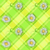 Seamless pattern of white daisys Stock Image