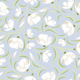 Seamless pattern with white flowers on blue. Royalty Free Stock Images