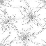 Seamless pattern with white flowers Stock Photo