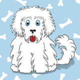 Seamless pattern with white fluffy dog and bones Royalty Free Stock Image