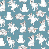 Seamless pattern with white French Bulldogs on a blue background Stock Photography