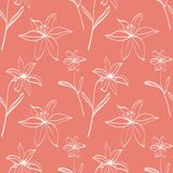 Seamless pattern with white lilies Stock Photo